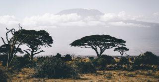 Oasisamérica: características y culturas